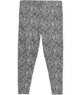 XLNT Leggings